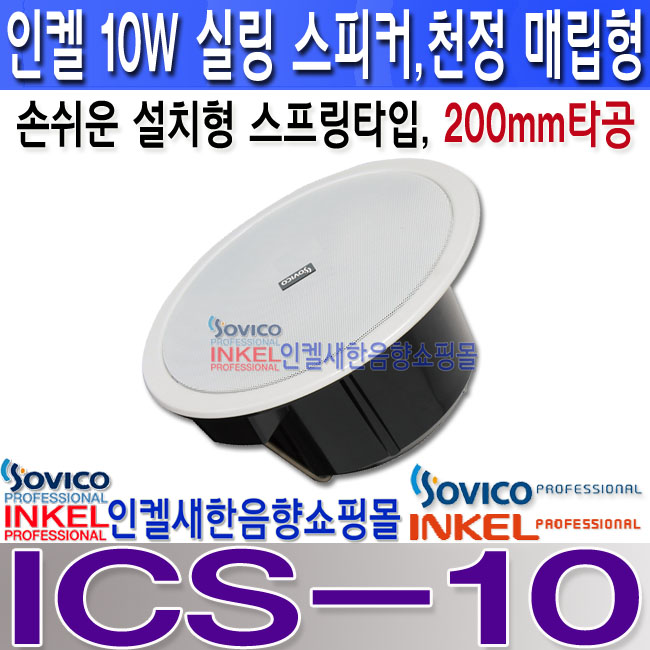 ICS-10 LOGO.jpg